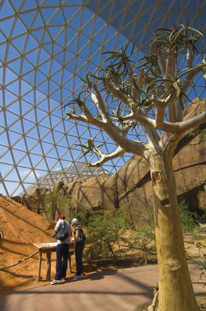 Photo - Visitors to the Desert Dome at the Henry Doorly Zoo in Omaha, Neb., can enjoy the exhibits year-round. Photo courtesy of the Nebraska Tourism Commission.
