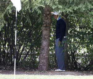 Photo - Tiger Woods stands under a tree behind the first hole during the second round of the BMW Championship golf tournament at Conway Farms Golf Club in Lake Forest, Ill., Friday, Sept. 13, 2013. Woods double bogeyed the hole. (AP Photo/Charles Rex Arbogast)