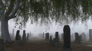 Photo - Dense fog blankets Evergreen Cemetery in Los Angeles early Wednesday, Jan. 29, 2014. The National Weather Service issued fog advisories for Southern California coastal areas and some valleys, citing visibilities of a quarter-mile or less.  (AP Photo/Nick Ut)