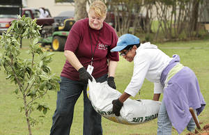 Photo - Evelyn Harms, left, and Terry Bolden unload mulch Monday as volunteers and Oklahoma County Social  Services employees plant apple, pear and cherry trees and blackberry bushes in a new orchard to benefit  at-risk youths and low-income seniors in Oklahoma City. Story, Page 11A. Photo by Steve Sisney, The Oklahoman