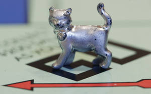 Photo - FILE - In this Tuesday, Feb. 5, 2013, file photo, the newest Monopoly token, a cat, rests on the game board at Hasbro Inc. headquarters, in Pawtucket, R.I. Hasbro knows that Monopoly fans play with their own rules, from negotiating to co-own properties to collecting a pile of cash if you land on 'Free Parking. So it is letting Facebook fans dictate the 'house rules' in future editions of the game. (AP Photo/Steven Senne, File)