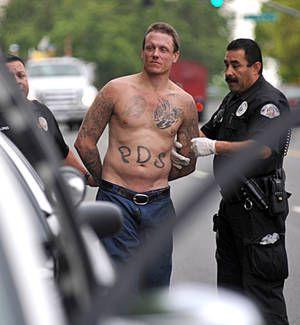 Photo -   West Covina, Calif., Police officers hold a credit union robbery suspect who led police on a chase through Los Angeles suburbs, that included his apparent girlfriend climbing into his still-moving van and ended with a dog bite, in Whittier, Calif., Monday, April 23, 2012. West Covina police said the man, whose name was not immediately available, and his girlfriend had together robbed a West Covina credit union, then lead police on a pursuit throughout area cities until officers stopped the pursuit with a PIT maneuver. (AP Photo/San Gabriel Valley Tribune, Keith Durflinger)