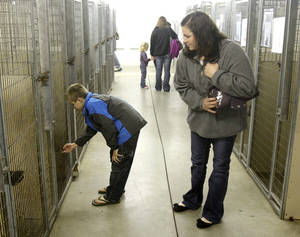 Photo - Shawna Scrag and her son, Tanner Sweeney, 10, look at adoptable dogs.
