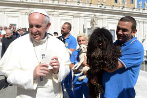 Photo - In this photo provided by the Vatican newspaper L'Osservatore Romano, Pope Francis is shown a dog by a member of the Federazione Italiana Sport Cinofili (Italian Federation of Canine' Sports), following his weekly general audience at the Vatican, Wednesday, Sept. 18, 2013. (AP Photo/L'Osservatore Romano, ho)