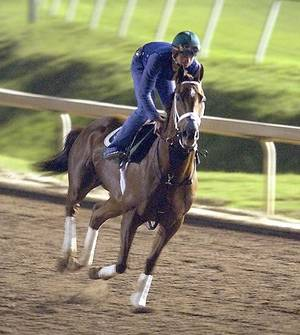 Photo - Azeri with rider Yutta C.T. Lang has a workout at Lone Star Park in Grand Prairie, Texas, in 2004. AP File Photo