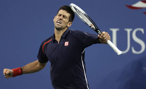 Photo -   Novak Djokovic, of Serbia, reacts after winning a point against Juan Martin del Potro, of Argentina, during a quarterfinal of the U.S. Open tennis tournament, Thursday, Sept. 6, 2012, in New York. (AP Photo/Charles Krupa)