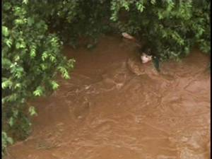 photo - This image made from video provided by KWTV shows a person stranded in a tree during flash flooding across the Oklahoma City area Monday, June 14, 2010. Flooding stranded motorists on their morning commutes Monday, prompting at least a half-dozen rescues and at least three interstate closures, authorities said. (AP Photo/KWTV)