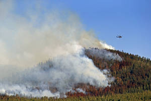 Photo - A helicopter hovers above the San Juan Fire, Saturday, June 28, 2014 in Vernon, Ariz. Emergency crews have set up a shelter for evacuees of a wildfire in northeastern Arizona's White Mountains that has charred more than 8 square miles. (AP Photo/The Arizona Republic, David Kadlubowski)