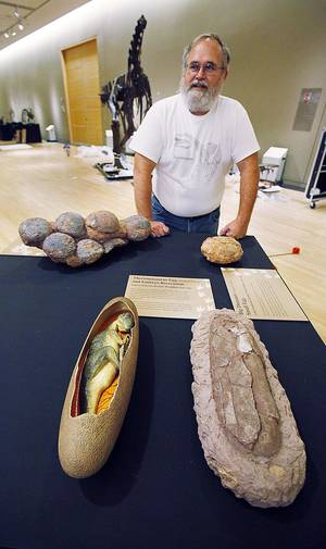 photo - Fossil preparator Kyle Davies talks about artifacts as workers put up the exhibit.