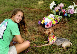 Photo - Cassidy Towe and her dog, Shadow, at the gravesite of family pet, Maple, buried in Precious Pets Cemetery in Spencer.   PHOTO PROVIDED BY FAMILY
