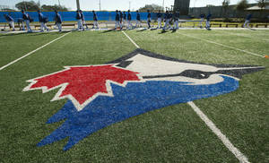 Photo - The Toronto Blue Jays walk onto the field for their first official day of spring training baseball practice on Monday, Feb. 17, 2014, in Dunedin, Fla. (AP Photo/The Canadian Press, Frank Gunn)