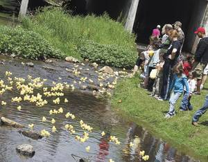 Photo - The Red Fern Festival includes a duck race, as shown here last year. (Tahlequah Daily Press photo)