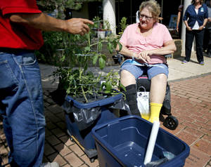 Photo -  Carol Reynolds looks at a Garden Anywhere Box at Jim Thorpe Rehabilitation Center in Oklahoma City. Photo by Bryan Terry, The Oklahoman  <strong>Bryan Terry -   </strong>