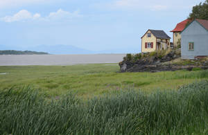 Photo - In this photo taken Aug. 15, 2013, windswept homes are seen by the river on Ile-aux-Grues in the St. Lawrence River. The island offers quiet roads and stunning river vistas for cyclists and lovers of solitude. (AP Photo/Calvin Woodward)