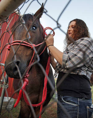 Photo - Maeghan Hadley prepares to work with rescue horse Jessie on her ranch on Thursday, June 28, 2012, in Purcell, Okla.  Photo by Steve Sisney, The Oklahoman
