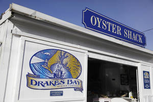 Photo - FILE - This Wednesday Nov. 21, 2012, file photo, shows the exterior of an oyster shack at the Drakes Bay Oyster Company in Point Reyes National Seashore, Calif. U.S. The owner of the oyster farm said Wednesday, Jan. 15, 2014, he'll ask the U.S. Supreme Court to hear his case challenging a federal decision not to renew the facility's lease. (AP Photo/Eric Risberg. File)