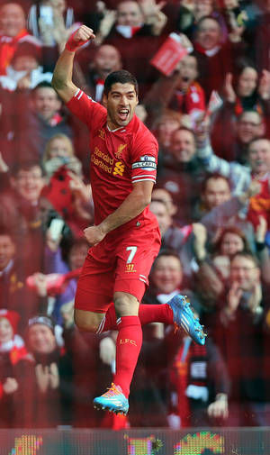 Photo - Liverpool's Luis Suarez celebrates scoring his team's opening goal during their English Premier League soccer match against Cardiff City at Anfield, Liverpool, England, Saturday, Dec. 21, 2013. (AP Photo/Peter Byrne, PA Wire)   UNITED KINGDOM OUT   -   NO SALES  -  NO ARCHIVES