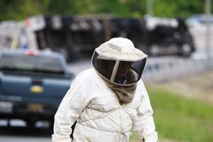 Photo - Bees swarm after being released from a tractor-trailer that overturned carrying them near Newark, N.J., Tuesday, May 20, 2014, on the ramp from Route 896 to Interstate 95. Sgt. Paul Shavack said the driver and a passenger were taken to Christiana Hospital with minor injuries. (AP Photo/The Wilmington News-Journal, Suchat Pederson)