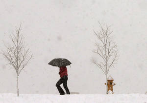 Photo - A person walks along Jayhawk Boulevard with an umbrella as snow from a winter storm begins to fall in Lawrence, Kan., Saturday, March 23, 2013. (AP Photo/Orlin Wagner)