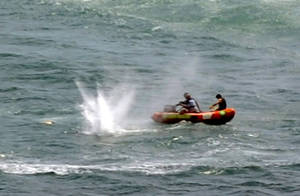 """Photo - Police in inflatable rubber boats shoot at a shark off Muriwai Beach near Auckland, New Zealand, Wednesday, Feb. 27, 2013, as they attempt to retrieve a body following a fatal shark attack. Police said a man was found dead in the water after being """"bitten by a large shark."""" (AP Photo/Ross Land) NEW ZEALAND OUT, NO SALES"""