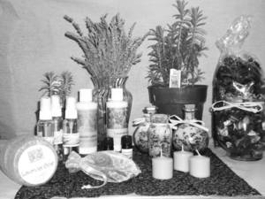 photo - Lavender plants and products from Lavender Valley Acres, near Apache in southwestern Oklahoma.  PHOTO PROVIDED