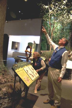 Photo -  Docent volunteers Nance Ross and John Allen familiarize themselves with artifacts in a gallery at the Sam Noble Oklahoma Museum of Natural History in Norman. PHOTO PROVIDED  <strong></strong>