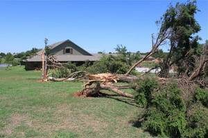 Photo - Below: A tornado destroyed 125 trees on the grounds of Peppers Ranch. Damage to the ranch was almost $1 million.