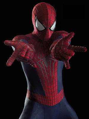 Photo -  Spider-Man IMAGE PROVIDED  <strong></strong>