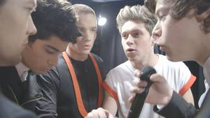 "Photo - The members of British boy band One Direction, from left, Louis Tomlinson, Zayn Malik, Liam Payne, Niall Horan, and Harry Styles, appear in the concert documentary ""One Direction: This Is Us."" TriStar Pictures photo"