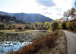 Photo - This Oct. 14, 2013 photo shows the path of Trail of the Coeur d'Alenes as it weaves around a small lake and hillside in Idaho. The trail is one of two dozen routes  named to the Rails-to-Trails Conservancy Hall of Fame. (AP Photo/Carey J. Williams)