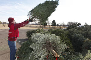 photo - Robert Whalen stacks leftover Christmas trees Wednesday at Mitch Park. The dying trees will be turned into Mulch.