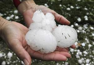 Photo - Tennis ball size hail covered much of northwest Oklahoma City, OK, after a severe thunderstorm moved through the area, Sunday, May 16, 2010. By Paul Hellstern