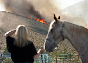 "Photo - Barb Otte of West Richland holds a neighbor's horse as she watches a line of flames head across Red Mountain in West Richland, Wash.,  late Monday afternoon Aug. 13, 2012.  Several of Kelly Arthur-Moore's neighbors rushed to help her pull three horses and other pets out of harms way. ""That's just what neighbors do,"" Otte said. Firefighters from several Mid-Columbia agencies attacked the blaze that burned a large portion of the north side of Red Mountain. AP photo"