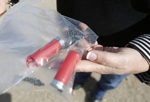 Photo - Carolyn Pimsler holds lead shot shells that will be used at a proposed skeet shooting range on SE 119th near Lake Stanley Draper in Oklahoma City, Friday February  08, 2013. Local residents have concerns about noise and the lead shot contaminating the water in the area. Photo By Steve Gooch, The Oklahoman