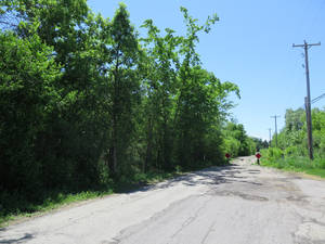 Photo - The site in Waukesha, Wis.,  where a bicyclist found a 12-year-old girl who had 19 stab wounds is seen on Tuesday June 3, 2014.  Two   12-year-old girls are accused of stabbing the girl in the woods to please a fictional creature they learned about online. (AP Photo/Carrie Antlfinger)