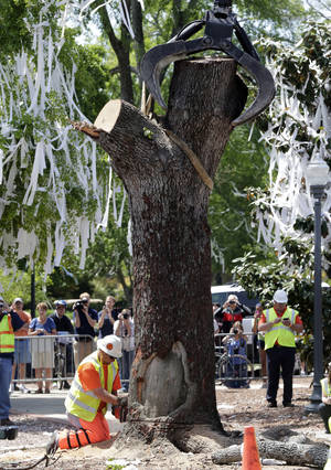 Photo - City workers cut down the poisoned oak trees at Toomer's Corner at the entrance to Auburn University in Auburn, Ala., Tuesday, April 23, 2013. Harvey Updyke Jr. is serving a jail term after pleading guilty to spiking the oaks with a powerful herbicide, and experts say they can't be saved. Workers used chainsaws and heavy equipment to remove what's left of the once-lush hardwoods at Toomer's Corner. Auburn fans traditionally roll the trees with toilet paper after a big victory, and tens of thousands rolled the trees after the spring football game last Saturday. (AP Photo/Dave Martin)
