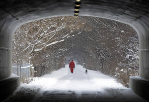 Photo - Naoom Haimson walks his dog, Molly, on the snow covered Monon Trail in Carmel, Ind., Thursday, Jan. 2, 2014. Over 5 inches of snow fell in Central Indiana. (AP Photo/Michael Conroy)
