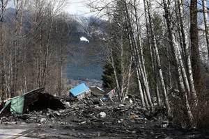 Photo - A demolished house sits in the mud on Highway 530, Sunday, March 23, 2014 the day after a giant landslide occurred near Oso, Wash. The slide of mud, trees and rocks happened about 11 a.m. Saturday morning. Several people - including an infant - were critically injured and at least six houses were destroyed. (AP Photo/The Seattle Times, Lindsey Wasson, Pool)