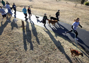 photo - Dogs and their owners run Saturday during the Doggie Dash 5k run at J.L. Mitch Park in Edmond.