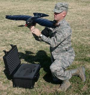 Photo - A soldier demonstrates a small unmanned air vehicle called a Perching Micro Air Weapon, or PMAW, which is being funded by the Air Force Research Laboratory (AFRL) Munitions Directorate. <strong> - Provided by Design Intelligence Incorporated, LLC</strong>