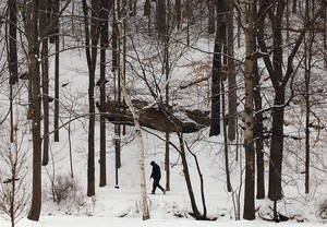 Photo - A walker treks along a snow-covered trail at The South Abington Township Park and Recreation Center in Chinchilla, Pa., Saturday, Dec. 29, 2012. Photo by Butch Comegys, The Scranton Times-Tribune/AP <strong>Butch Comegys</strong>