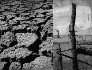 photo - Cracked earth is only one sign of the drought conditions, aggravated by a prolonged dry spell, which spread throughout southwestern Oklahoma and the Panhandle. Fence posts stand in parched fields, forcing inactivity of all concerned. From Oklahoman print archive, dated July 14, 1970. &lt;strong&gt;Paul Long - The Oklahoman Archives&lt;/strong&gt;