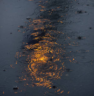 Photo - Rain drops fall on the reflection of the Olympic cauldron in a puddle at the Sochi Winter Olympics Tuesday Feb. 18, 2014 in Sochi, Russia. (AP Photo/The Canadian Press, Adrian Wyld)