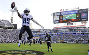 Photo - Tennessee Titans wide receiver Nate Washington (85) jumps after scoring a touchdown against the Jacksonville Jaguars on a 30-yard pass play during the second half of an NFL football game in Jacksonville, Fla., Sunday, Dec. 22, 2013. (AP Photo/Stephen Morton)