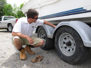 Photo - In this June 4, 2014 photo, Daniel Rahal, a boat inspector for the Lake George Park Commission, examines a boat trailer for signs of aquatic invasive species in Bolton Landing, NY. Boaters wanting to use New York's Lake George this season will be required to have their vessels checked for invasive species and decontaminated if any are found. (AP Photo/Mary Esch)
