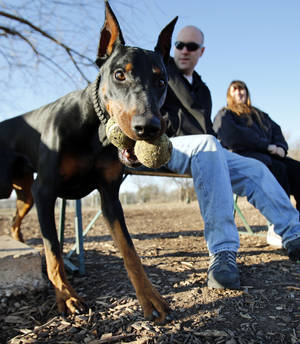 Photo - Austin and Donna Little take advantage of sunny weather Wednesday and exercise their dog Iblis at the dog park in northeast Norman. PHOTO BY STEVE SISNEY, THE OKLAHOMAN <strong>STEVE SISNEY</strong>