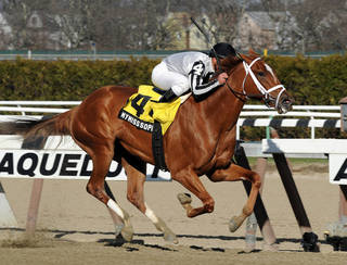 In this photo provided by the New York Racing Association, My Miss Sophia, with Javier Castellano aboard, captures The Gazelle Stakes horse race at Aqueduct Race Track in New York, Saturday, April 5, 2014. (AP Photo/New York Racing Association, David Alcosser)