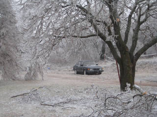 """Photo submitted by Tyrell Walton, Lawton, who writes, """"Day 6 and no power in my neighborhood east of Lawton. All of our trees on the property are destroyed. How can such a beautiful picture be so destructive to our everyday way of life?"""""""
