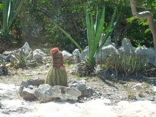 The Turk's head cactus, shown here on Providenciales, helped give the islands of Turks and Caicos their name. Photo courtesy of Adriana Gardella.