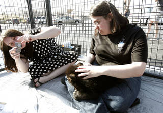 Amber Lowry of Edmond, Okla., takes pictures of her friend Stephanie Knoblock Cleveland, Ohio holding Edith, a 6-week-old North American black bear at Bryant Square Shopping Center in Edmond, Okla., on Saturday, April 5, 2008. The cub was part of G.W. Exotic Animal Park's road show. BY SARAH PHIPPS, THE OKLAHOMAN ORG XMIT: KOD